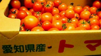 tomatoto